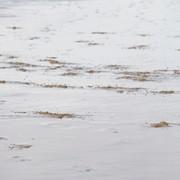<strong>Zeeuwse kust 4</strong>